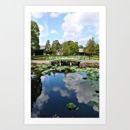 Mirror World Art Print