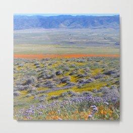 Flowering Fields Metal Print