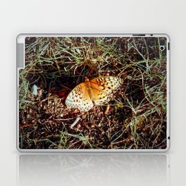 Just A Plain Ole' Butterfly Laptop & iPad Skin