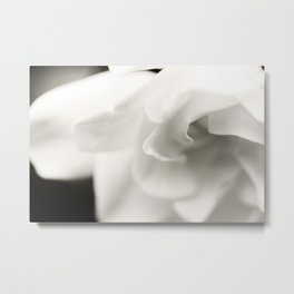 Black and White Gardenia Metal Print