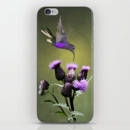 Violet Sabrewing Hummingbird and Thistle iPhone Skin