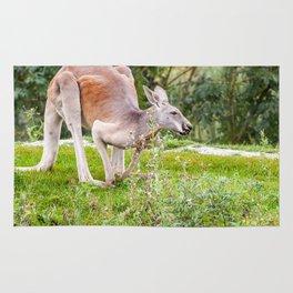 Kangaroe Rug