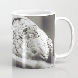 Southeastern Girdled Lizard Coffee Mug