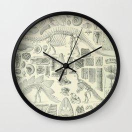 Fossil Chart Wall Clock