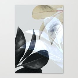 Moody Leaves II Canvas Print