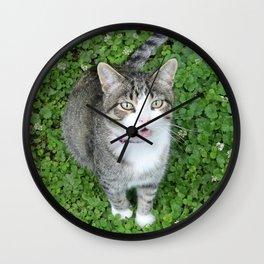 Cat in Clover Wall Clock