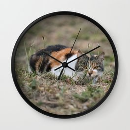 Multicolor cat is playing hide and seek Wall Clock