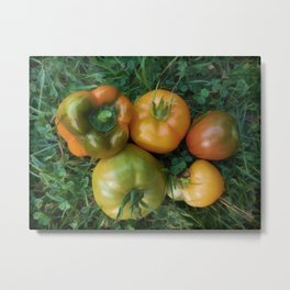 Fresh tomatoes and bell pepper Metal Print