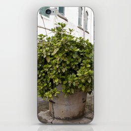 Inne yard iPhone Skin