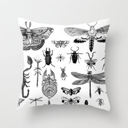 Bug Board Throw Pillow