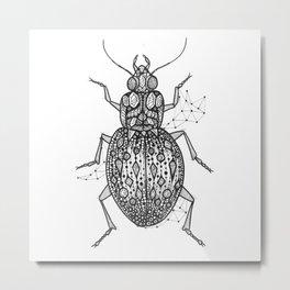 Bug 3 Metal Print