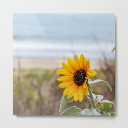 Sunflower near ocean Metal Print