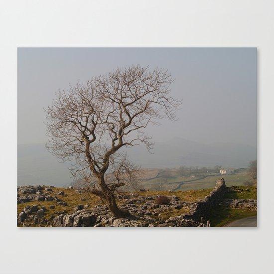 Endurance Canvas Print