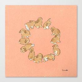 12 lop rabbits Canvas Print
