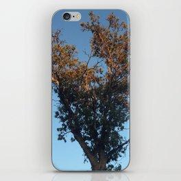 Heart tree gold light iPhone Skin