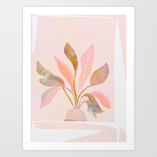 Blush Jungle Home Plant by domvariwords