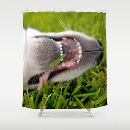 Laugh it off! Shower Curtain