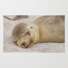 Sleeping baby sea lion Rug