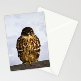 Merlin Falcon Stationery Cards