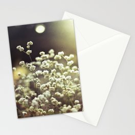 Baby's Breath 3 Stationery Cards