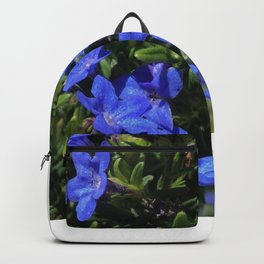 Idly Backpack