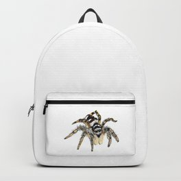 Jumping Spider Backpack