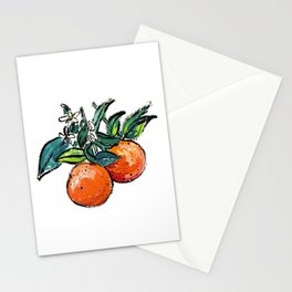 Oranges and Orange Blossom California Citrus Pattern Painting on White Stationery Cards