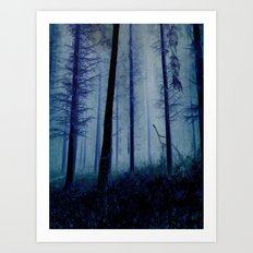 Blue Pines Art Print