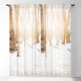 Atmospheric Winter Forest Photo | Winter Photography | Snow In Forest With Sun In Background Blackout Curtain