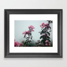 Soft Hues Framed Art Print