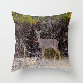 Country Life... Throw Pillow