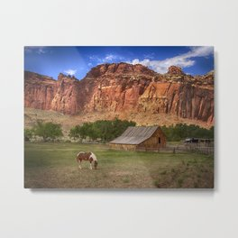 Horse and Barn at Capitol Reef National Park, Utah Metal Print