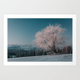 First light - Landscape and Nature Photography Art Print