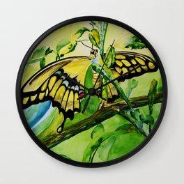 Lime Tree Butterfly II Wall Clock