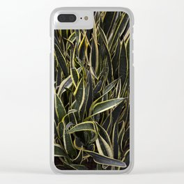 Sansevieria 'Black Gold' Clear iPhone Case