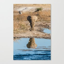 Elephant Reflection in Madikwe Game Reserve, South Africa Canvas Print