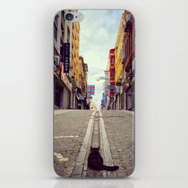 The Cat and Istanbul iPhone Skin