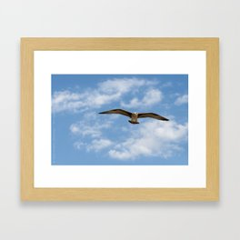 Flying! Framed Art Print