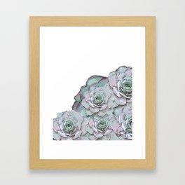 Succulent N.1 Framed Art Print