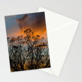 Desert Flora At Sunset - Bush  Stationery Cards