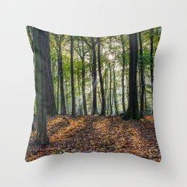 Beech Woodland Sunrise Throw Pillow