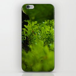Silk of nature iPhone Skin