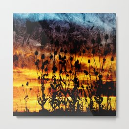 Teasel Silhouette Sunset with Textured Finish. Metal Print