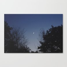 Crescent Lullaby Canvas Print