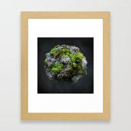 The Moss Globe Framed Art Print