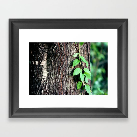 Wrinkles in Nature Framed Art Print
