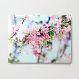 Fleurs de Pommier Metal Print