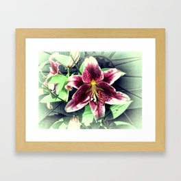 Pink Lily Flower Cottage Chic Modern Country Home Decor A419A Framed Art Print