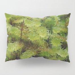 Green moss Pillow Sham
