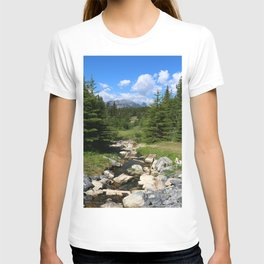 Mountain Brook In Th Rockies T-shirt